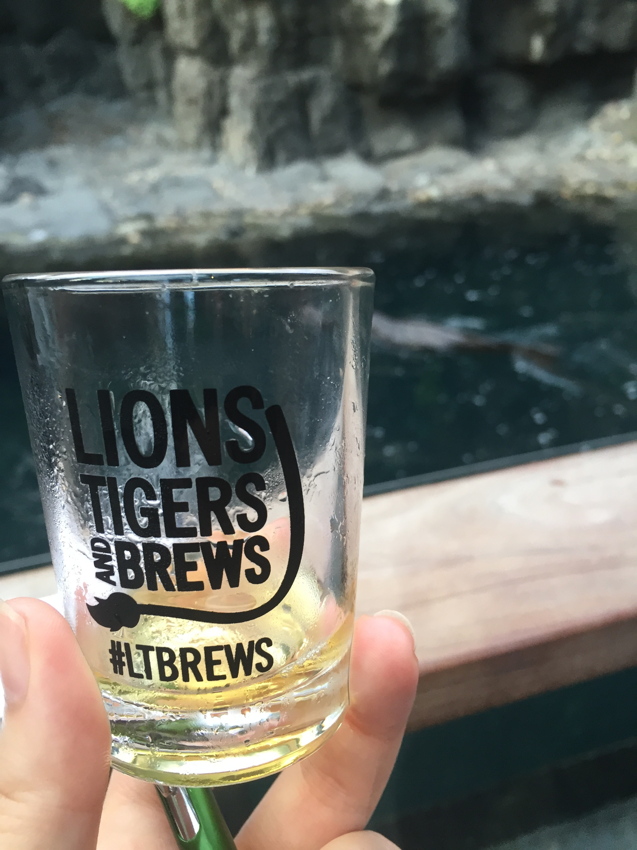 Lions, Tigers and Brews at the Central Park Zoo