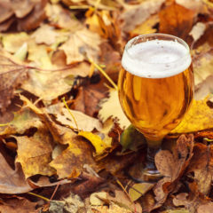 Cider to the Rescue Recipes